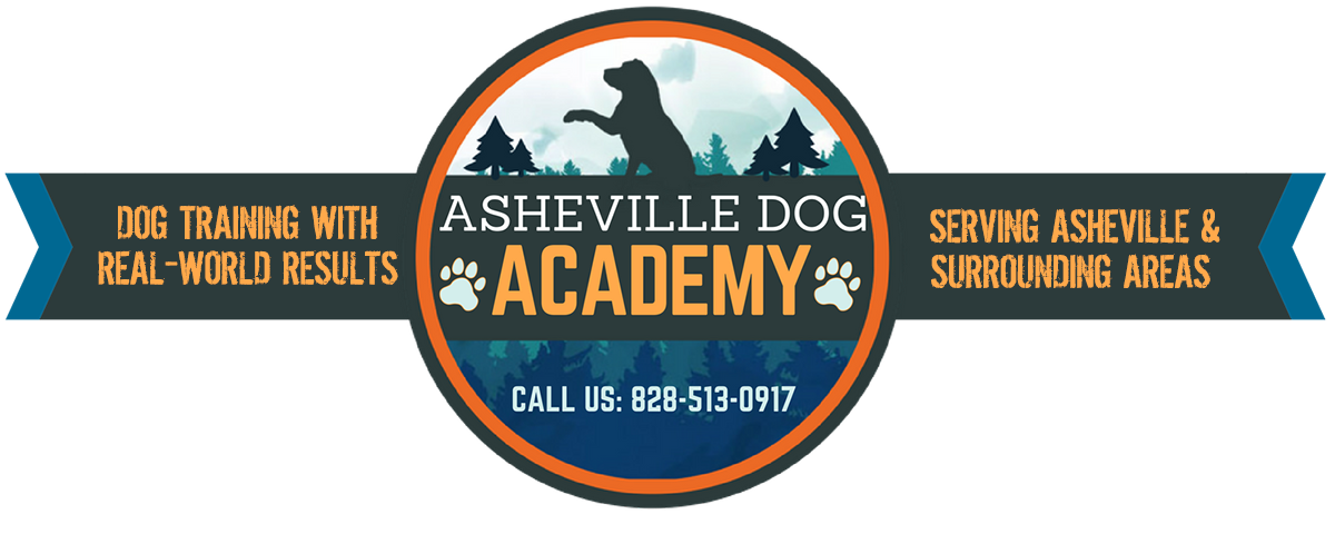 Asheville Dog Academy